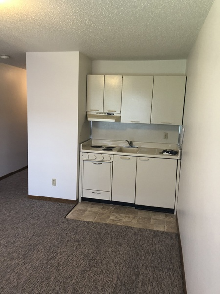 Fargo, North Dakota, 1 Bedroom Bedrooms, ,1 BathroomBathrooms,Trollwood Village,For Rent,1025